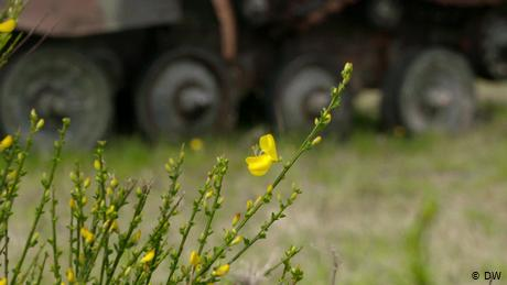 The German army's surprising green thumb
