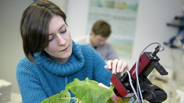 A women in a lab analyzing a plant with a measurement device.